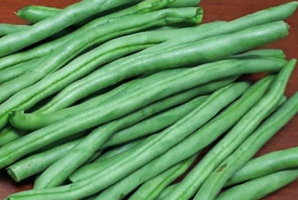 sayuran-untuk-murai-batu
