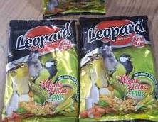 voer-leopard-untuk-pleci